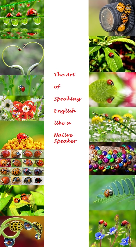 -The Art of Speaking English like A Native Speaker-