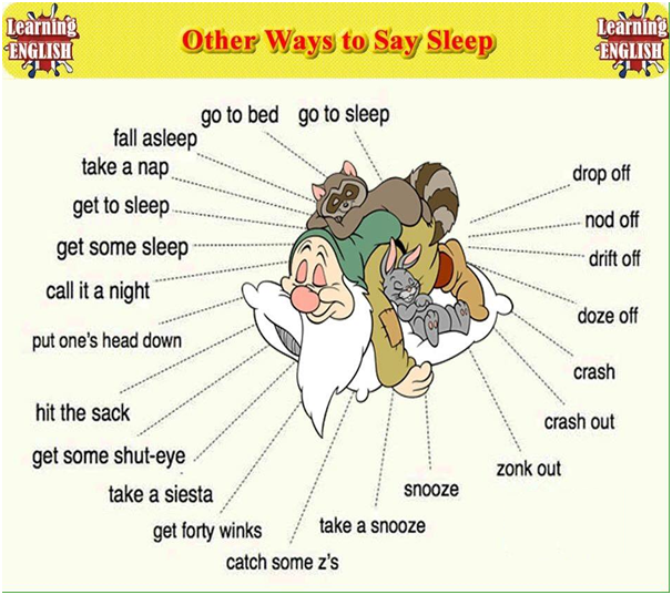 Other Ways To Sleep
